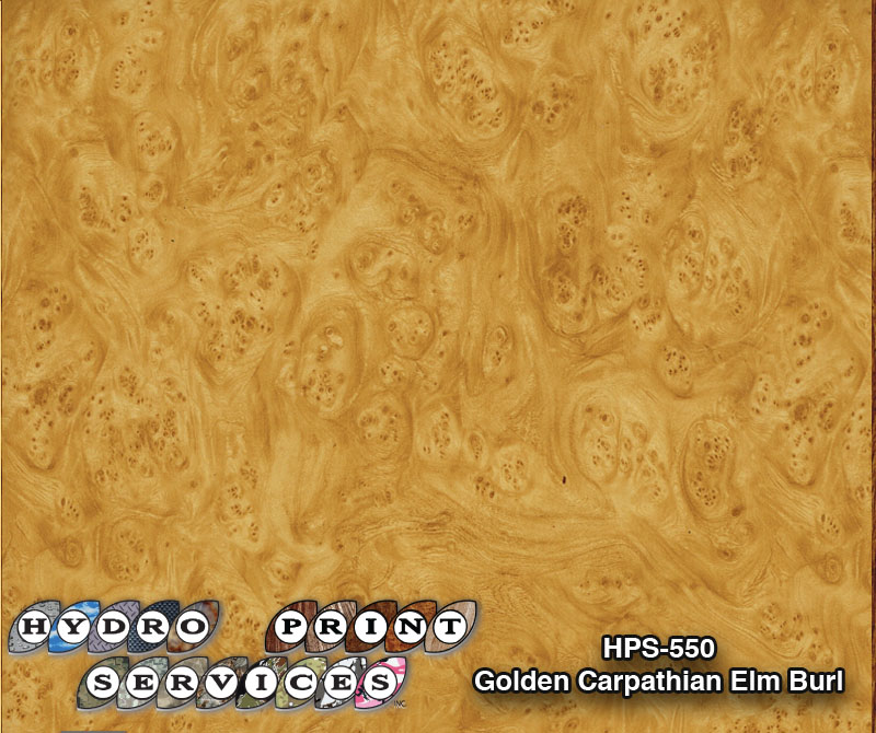 HPS-550 Golden Carpathian Elm Burl